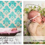 South Wales Newborn Photography