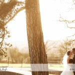 Llansantffraed Court Hotel Wedding Photography