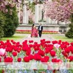 wedding photographer cardiff - cathays park spring