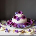 wedding photographer cardiff - roch castle wedding cake