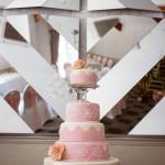 wedding photographer cardiff - coed y mwstwr bridgend cake